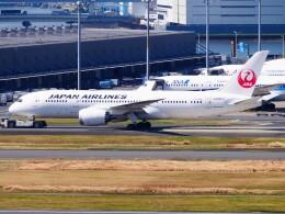 mich_stoneさんが、羽田空港で撮影した日本航空 787-8 Dreamlinerの航空フォト(飛行機 写真・画像)