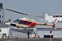 Mizuki24さんが、東京ヘリポートで撮影したヘリサービス 206B-3 JetRanger IIIの航空フォト(飛行機 写真・画像)