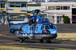 Mizuki24さんが、東京ヘリポートで撮影した警視庁 AS332L1 Super Pumaの航空フォト(飛行機 写真・画像)