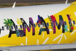 blowgunさんが、中部国際空港で撮影したピーチ A320-214の航空フォト(飛行機 写真・画像)