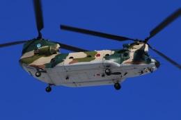 F-4さんが、入間飛行場で撮影した航空自衛隊 CH-47J/LRの航空フォト(飛行機 写真・画像)