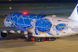 让开我先飞さんが、廈門高崎国際空港で撮影した全日空 A380-841の航空フォト(飛行機 写真・画像)