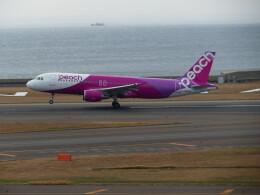 ヒロポンさんが、中部国際空港で撮影したピーチ A320-214の航空フォト(飛行機 写真・画像)
