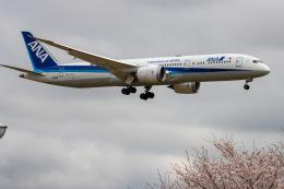 チャッピー・シミズさんが、成田国際空港で撮影した全日空 787-9の航空フォト(飛行機 写真・画像)
