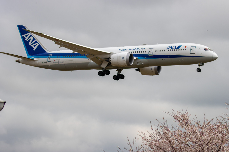 チャッピー・シミズさんの全日空 Boeing 787-9 (JA891A) 航空フォト
