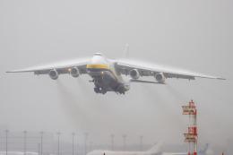 チャッピー・シミズさんが、成田国際空港で撮影したアントノフ・エアラインズ An-124-100 Ruslanの航空フォト(飛行機 写真・画像)