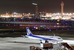 HNANA787さんが、羽田空港で撮影した全日空 A320-214の航空フォト(飛行機 写真・画像)