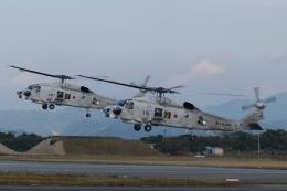 木人さんが、館山航空基地で撮影した海上自衛隊 SH-60Kの航空フォト(飛行機 写真・画像)