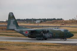 ゆーすきんさんが、入間飛行場で撮影した航空自衛隊 C-130H Herculesの航空フォト(飛行機 写真・画像)