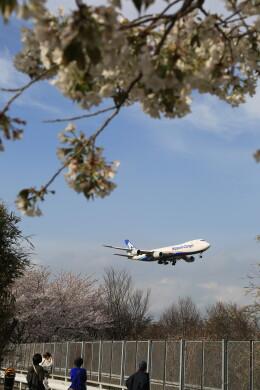 flyskyさんが、成田国際空港で撮影した日本貨物航空 747-8KZF/SCDの航空フォト(飛行機 写真・画像)