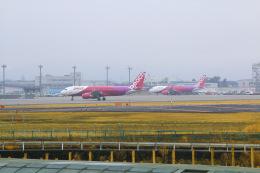 TK199さんが、仙台空港で撮影したピーチ A320-214の航空フォト(飛行機 写真・画像)