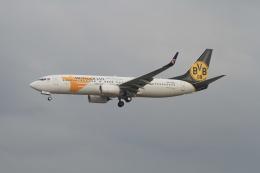 TAK_HND_NRTさんが、成田国際空港で撮影したMIATモンゴル航空 737-8SHの航空フォト(飛行機 写真・画像)
