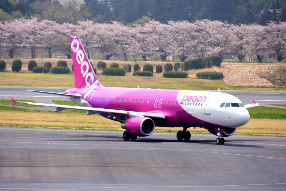 まいけるさんのピーチ Airbus A320 (JA827P) 航空フォト