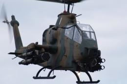 木人さんが、習志野演習場で撮影した陸上自衛隊 AH-1Sの航空フォト(飛行機 写真・画像)