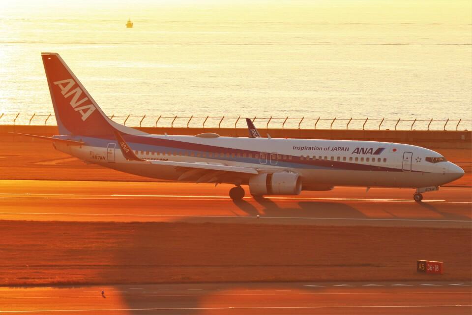 BOEING737MAX-8さんの全日空 Boeing 737-800 (JA87AN) 航空フォト