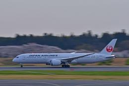 Souma2005さんが、成田国際空港で撮影した日本航空 787-9の航空フォト(飛行機 写真・画像)