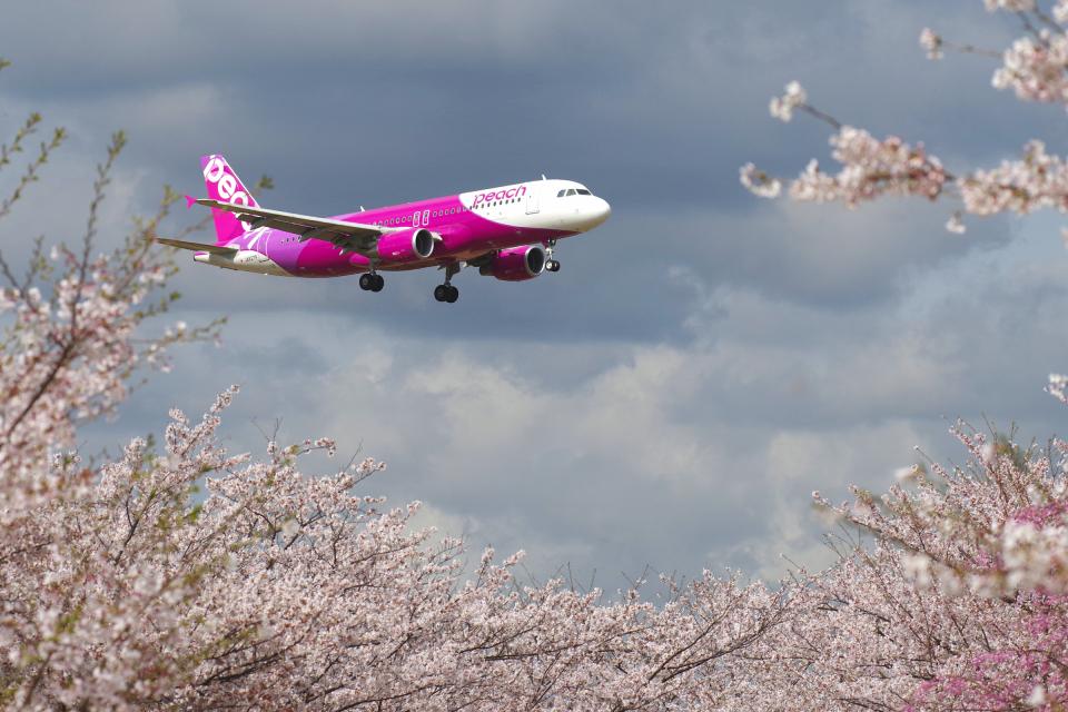 yabyanさんのピーチ Airbus A320 (JA827P) 航空フォト