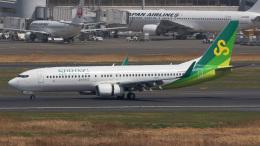 tkosadaさんが、羽田空港で撮影した春秋航空日本 737-8ALの航空フォト(飛行機 写真・画像)