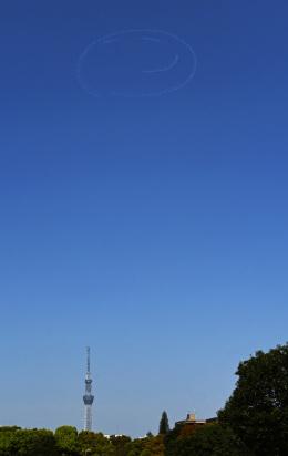 チャーリーマイクさんが、江東区で撮影したパスファインダー EA-300SCの航空フォト(飛行機 写真・画像)