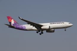 ゴンタさんが、成田国際空港で撮影したハワイアン航空 A330-243の航空フォト(飛行機 写真・画像)