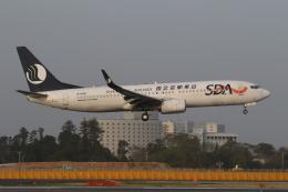 ゴンタさんが、成田国際空港で撮影した山東航空 737-85Nの航空フォト(飛行機 写真・画像)