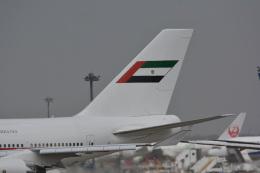 アルビレオさんが、成田国際空港で撮影したドバイ・ロイヤル・エア・ウィング 747-433Mの航空フォト(飛行機 写真・画像)