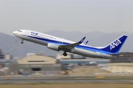 航空フォト:JA71AN 全日空 737-800