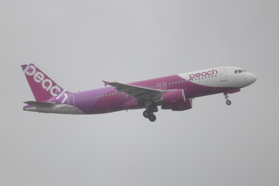 SIさんのピーチ Airbus A320 (JA827P) 航空フォト