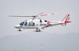 tamtam3839さんが、名古屋飛行場で撮影した静岡エアコミュータ AW109SPの航空フォト(飛行機 写真・画像)