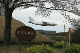 flyskyさんが、成田国際空港で撮影したアントノフ・エアラインズ An-124-100 Ruslanの航空フォト(飛行機 写真・画像)