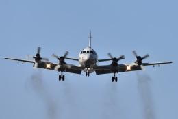 リョウさんが、下総航空基地で撮影した海上自衛隊 P-3Cの航空フォト(飛行機 写真・画像)