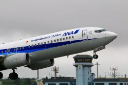 TK199さんが、宮古空港で撮影した全日空 737-881の航空フォト(飛行機 写真・画像)