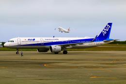 TK199さんが、宮古空港で撮影した全日空 A321-272Nの航空フォト(飛行機 写真・画像)