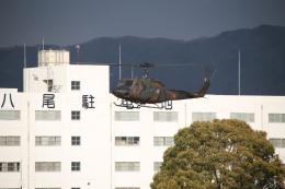 海鷹さんが、八尾空港で撮影した陸上自衛隊 UH-1Jの航空フォト(飛行機 写真・画像)