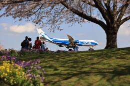 flyskyさんが、成田国際空港で撮影したエアブリッジ・カーゴ・エアラインズ 747-8Fの航空フォト(飛行機 写真・画像)