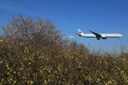 flyskyさんが、成田国際空港で撮影したエア・カナダ 777-333/ERの航空フォト(飛行機 写真・画像)