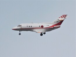 tetuさんが、札幌飛行場で撮影した航空自衛隊 U-125 (BAe-125-800FI)の航空フォト(飛行機 写真・画像)