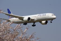soppy@ja899aさんが、成田国際空港で撮影したユナイテッド航空 787-9の航空フォト(飛行機 写真・画像)