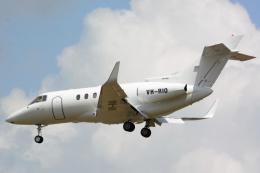 banshee02さんが、成田国際空港で撮影したSELETAR JET CHARTER PTY LTD Hawker 800の航空フォト(飛行機 写真・画像)