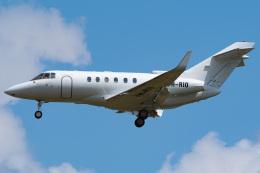 さんごーさんが、成田国際空港で撮影したSeletar Jet Charter Hawker 800の航空フォト(飛行機 写真・画像)