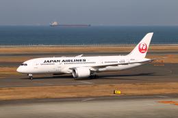 なごやんさんが、中部国際空港で撮影した日本航空 787-8 Dreamlinerの航空フォト(飛行機 写真・画像)