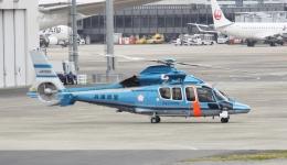 新城 JAL alpha rainbowさんが、伊丹空港で撮影した兵庫県警察 EC155B1の航空フォト(飛行機 写真・画像)