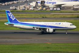 ▲®さんが、羽田空港で撮影した全日空 A320-211の航空フォト(飛行機 写真・画像)