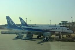 timeさんが、羽田空港で撮影した全日空 A320-271Nの航空フォト(飛行機 写真・画像)