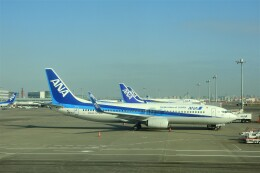 timeさんが、羽田空港で撮影した全日空 737-8ALの航空フォト(飛行機 写真・画像)