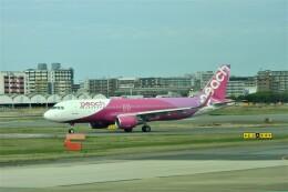 timeさんが、福岡空港で撮影したピーチ A320-214の航空フォト(飛行機 写真・画像)