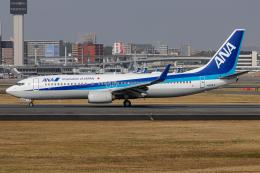 航空フォト:JA80AN 全日空 737-800