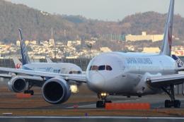 kaz787さんが、伊丹空港で撮影した日本航空 787-8 Dreamlinerの航空フォト(飛行機 写真・画像)