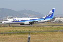 ITM58さんが、伊丹空港で撮影した全日空 737-881の航空フォト(飛行機 写真・画像)