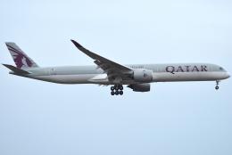 jun☆さんが、成田国際空港で撮影したカタール航空 A350-1041の航空フォト(飛行機 写真・画像)